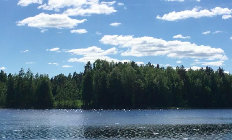 Finland Summer Lake View Video loop