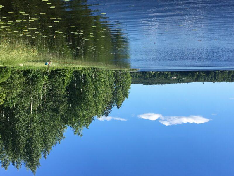 Summer in Finland - View to a Lake near Äänekoski