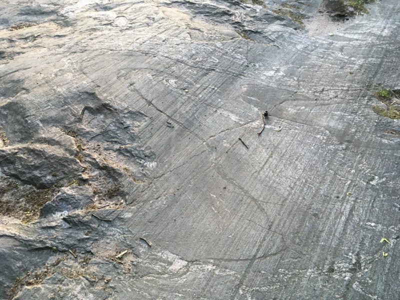 Glacial Bedrock with Scratches and Fold